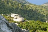 Natura Isola d'Elba